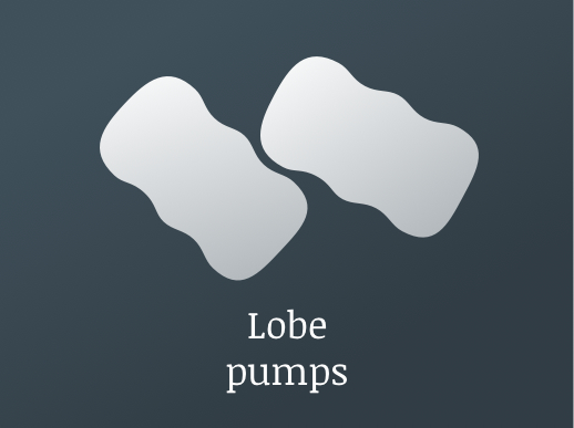 Reliable CFD Analysis of Rotary Lobe pumps